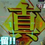 [パチンコ実践]北斗無双を遊戯[琴葉姉妹のパチスロ日和137日目]