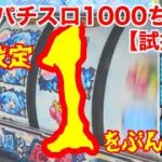 【試打動画】Sパチスロ1000ちゃんPXの高確率と設定①をぶん回してみた!!