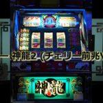【レトロ パチスロ】 サミー 神龍2 (チェリー前兆Ver.)