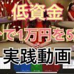 【オンラインカジノ】低資金1万円から5万円にする実録バカラ実践動画