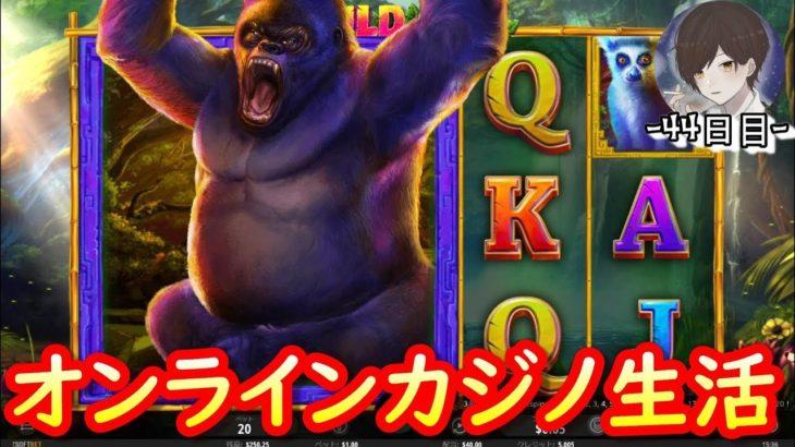オンラインカジノ生活-44日目-【ベラジョンカジノ】