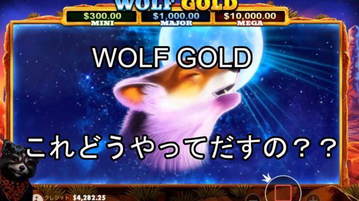 【オンラインカジノ】【ベラジョンカジノ】WOLF GOLDスロット実践!!
