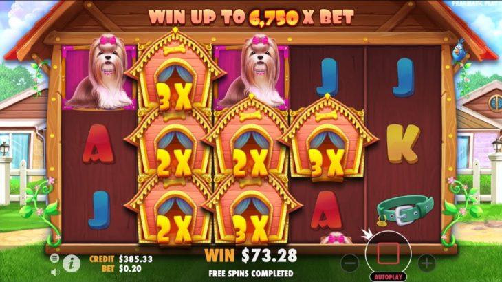 [x 366 WON!] THE DOG HOUSE / $73.28 Won / Bet $0.20