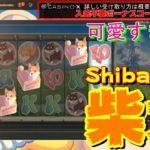 【casino slot's】自宅でパチスロ!!激カワ癒し系スロットのフリースピンGET!!【CasinoX ノニコム】