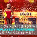 オンラインカジノのビデオスロット「PlayboyFortunes」の遊び方を解説しています。
