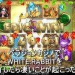 ベラジョンカジノでWHITE RABBITをプレイしたら凄いことが起こった!