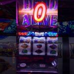 【パチスロ BLOOD+ 二人の女王】Dead or Alive 1000ゲーム乗せ【事故】【デッドオアアライブ】