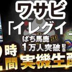 【パチスロ】ワサビ×イレグイ【ぱち馬鹿1万人突破記念12時間実機生配信】